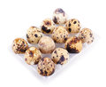 Quail eggs box isolated white background Royalty Free Stock Photography