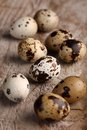 Quail eggs close up of on wooden background Royalty Free Stock Images