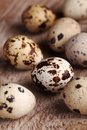 Quail eggs close up of on wooden background Stock Photos
