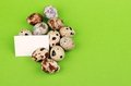 Quail eggs on Easter theme Royalty Free Stock Photo