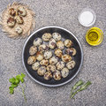 Quail eggs in a pan with oil and salt and herbs granitic rustic background top view close up Royalty Free Stock Photo