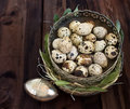 Quail eggs in a silver vase with grass and leaves Royalty Free Stock Photos