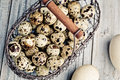 Quail eggs small spotted in vintage metal basket Stock Image