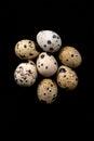Quail eggs texture. Many quail eggs