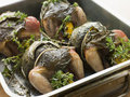 Quails Roasted in Vine Leaves with Lemon and Thyme Royalty Free Stock Images