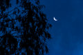 Quarter moon Royalty Free Stock Photo