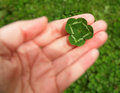 Quarterfoil in hand detail of or four leaf clover background is green grass garden Royalty Free Stock Photo