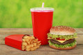 Quarterpounder meal with french fries and cola combo a drink Royalty Free Stock Photos