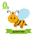 Queen bee. Q letter. Cute children animal alphabet in vector. Fu Royalty Free Stock Photo