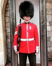 Queen guard in London Royalty Free Stock Photo