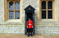 Queen's Guard Royalty Free Stock Photo