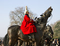 Queen s horse guard on duty london uk march members of the guards parade london march Stock Photography