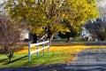 Quiet autumn street