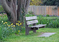 Quiet contemplation bench photo of a solitary park surrounded by various plants and flowers an ideal setting for Royalty Free Stock Images