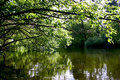 Quiet lake Royalty Free Stock Photo