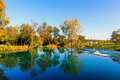 Quiet lake in the preserved nature Stock Photography