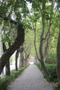 A quiet lane every day walking in and peaceful trail the mood abnormal weather Royalty Free Stock Photos