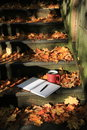 Quiet moments with coffee on steps cup of journal and pen old wood covered in fall foliage Royalty Free Stock Photos