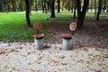 Quiet place of Minsk Kupala park