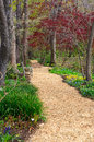 Quiet Place Park Setting Springtime Vertical Garden Path Royalty Free Stock Photo