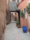 Quiet side street narrow cobbled residential alley between pink buildings and potted plants Royalty Free Stock Image