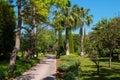 Quiet walkway into tropical garden Royalty Free Stock Photo