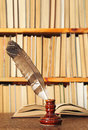 Quill in inkstand on a background of books Stock Image