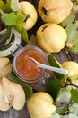 Quince jelly Stock Photo