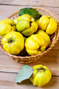 Quinces in the basket on table Stock Image