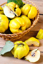 Quinces in the basket on table Royalty Free Stock Image