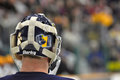 Quinnipiac Goalie Dan Clarke in NCAA Hockey Game Royalty Free Stock Image