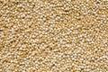Quinoa background Stock Photo