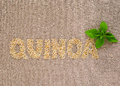 Quinoa word with basil Royalty Free Stock Images