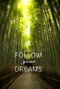 Quote with bamboo forest Royalty Free Stock Photo