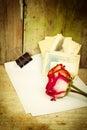 Röda rosor vitbok och gamla foto Arkivfoto