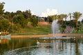 https---www.dreamstime.com-editorial-stock-image-palm-trees-lake-tropical-forest-bridge-over-inhotim-minas-gerais-brazil-image63953844