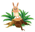 A rabbit above a stump illustration of on white background Royalty Free Stock Images