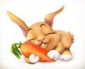 Carrot Cartoon Character