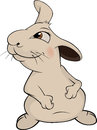 Rabbit cartoon grey lovely with long ears Royalty Free Stock Photos