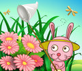 A rabbit catching dragonflies illustration of Royalty Free Stock Photo