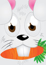 Rabbit face funny holding carrot Royalty Free Stock Image