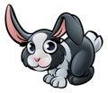Rabbit Farm Animals Cartoon Character Royalty Free Stock Photo