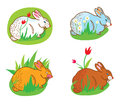 Rabbit in the grass with flowers easter set Royalty Free Stock Images