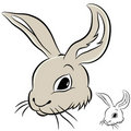 Rabbit Head Royalty Free Stock Photos