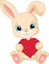 Rabbit holds love heart small lovely Royalty Free Stock Photos