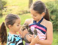 Rabbit in kids hands small holded and watched by girls Royalty Free Stock Photo