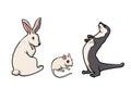 Rabbit mouse ferret Royalty Free Stock Photo