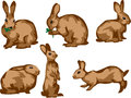 Rabbit moving stylized color illustrations Royalty Free Stock Photos