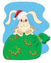 Rabbit.New Year symbol for text Royalty Free Stock Image