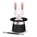Rabbit sits in hat of conjurer illustration format eps Royalty Free Stock Photography